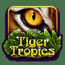 tiger tropic icon