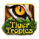 Tiger Tropics - free slot game