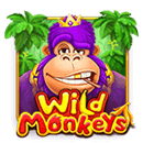 Wild Monkeys - free slot game