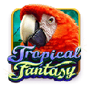 Tropical Fantasy - free slot game